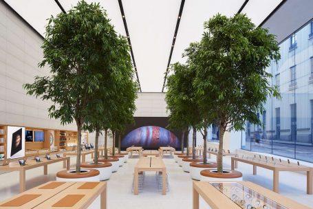 Os significados do novo conceito Apple